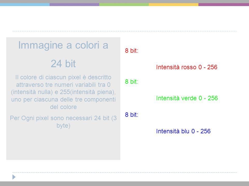 Immagine a colori a 24 bit Il colore di ciascun pixel è descritto attraverso tre numeri variabili tra 0 (intensità nulla) e 255(intensità piena), uno