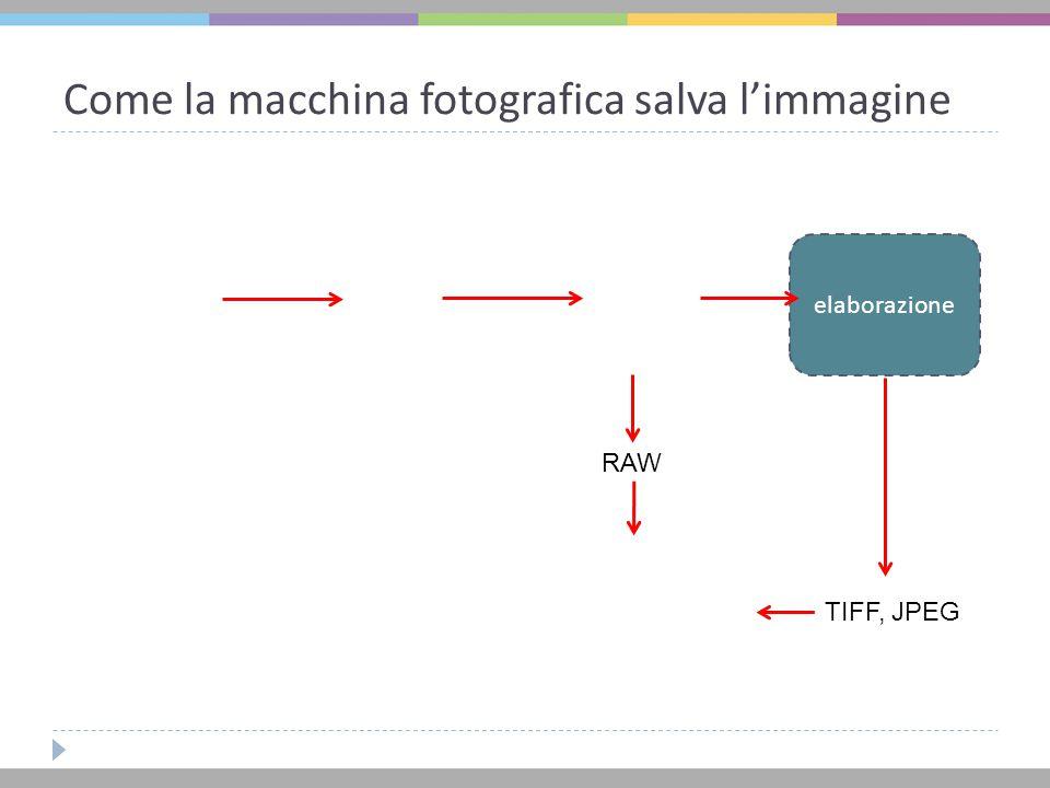 Come la macchina fotografica salva l'immagine elaborazione TIFF, JPEG RAW