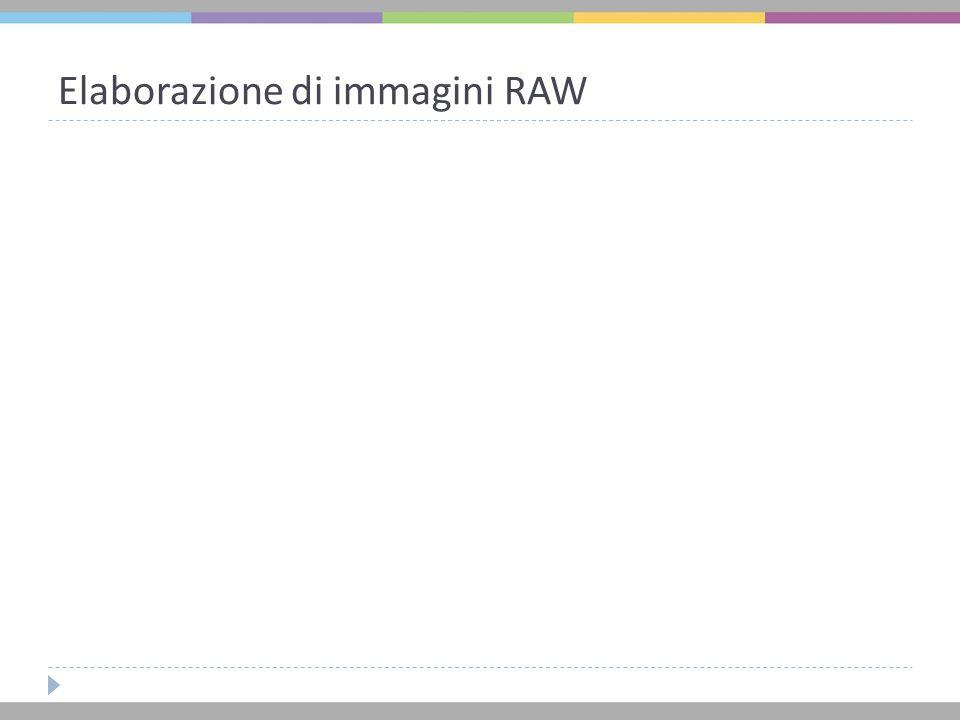 Elaborazione di immagini RAW