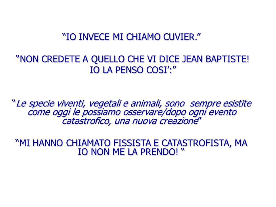 """""""IO INVECE MI CHIAMO CUVIER."""" """"NON CREDETE A QUELLO CHE VI DICE JEAN BAPTISTE! """"NON CREDETE A QUELLO CHE VI DICE JEAN BAPTISTE! IO LA PENSO COSI':"""" IO"""