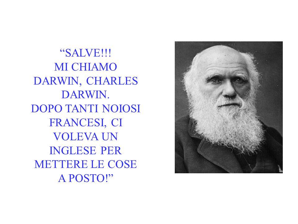 """""""SALVE!!! MI CHIAMO DARWIN, CHARLES DARWIN. DOPO TANTI NOIOSI FRANCESI, CI VOLEVA UN INGLESE PER METTERE LE COSE A POSTO!"""""""