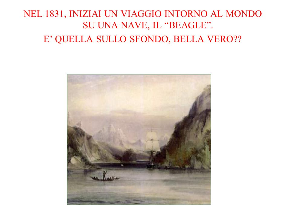 """NEL 1831, INIZIAI UN VIAGGIO INTORNO AL MONDO SU UNA NAVE, IL """"BEAGLE"""". E' QUELLA SULLO SFONDO, BELLA VERO??"""
