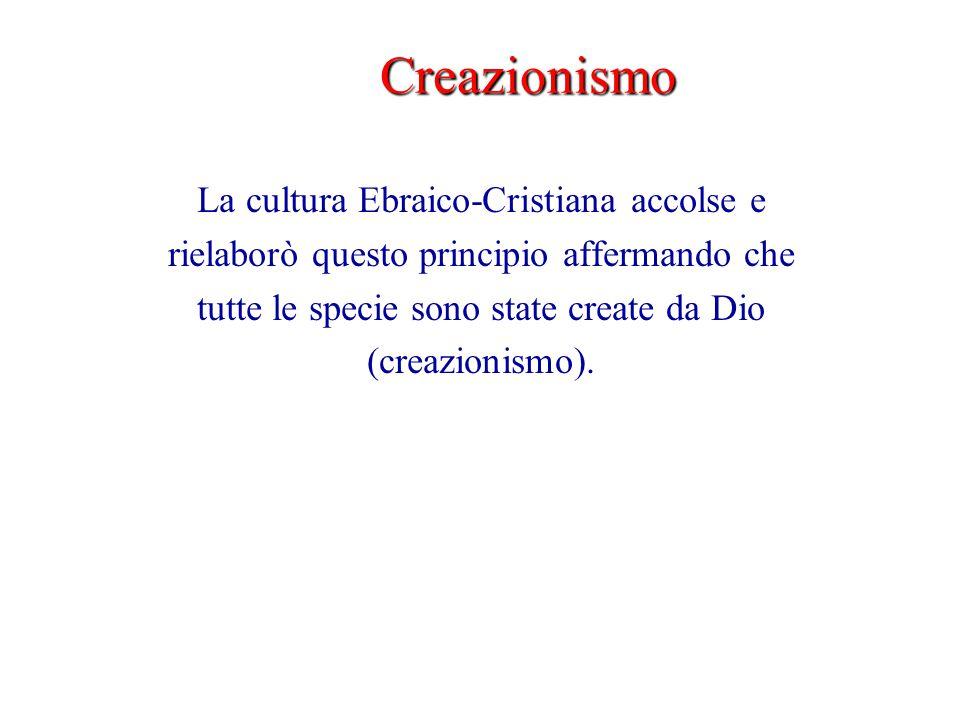 Creazionismo La cultura Ebraico-Cristiana accolse e rielaborò questo principio affermando che tutte le specie sono state create da Dio (creazionismo).