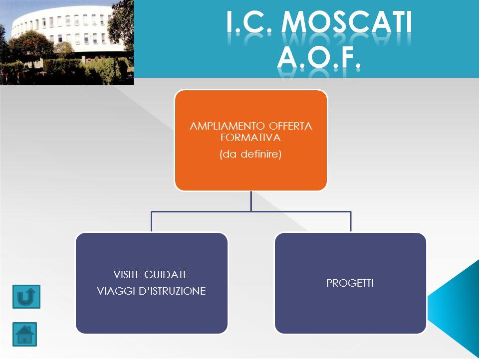 AMPLIAMENTO OFFERTA FORMATIVA (da definire) VISITE GUIDATE VIAGGI D'ISTRUZIONE PROGETTI