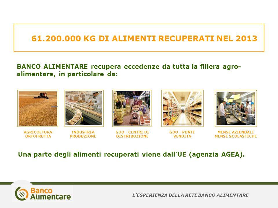 61.200.000 KG DI ALIMENTI RECUPERATI NEL 2013 BANCO ALIMENTARE recupera eccedenze da tutta la filiera agro- alimentare, in particolare da: AGRICOLTURA