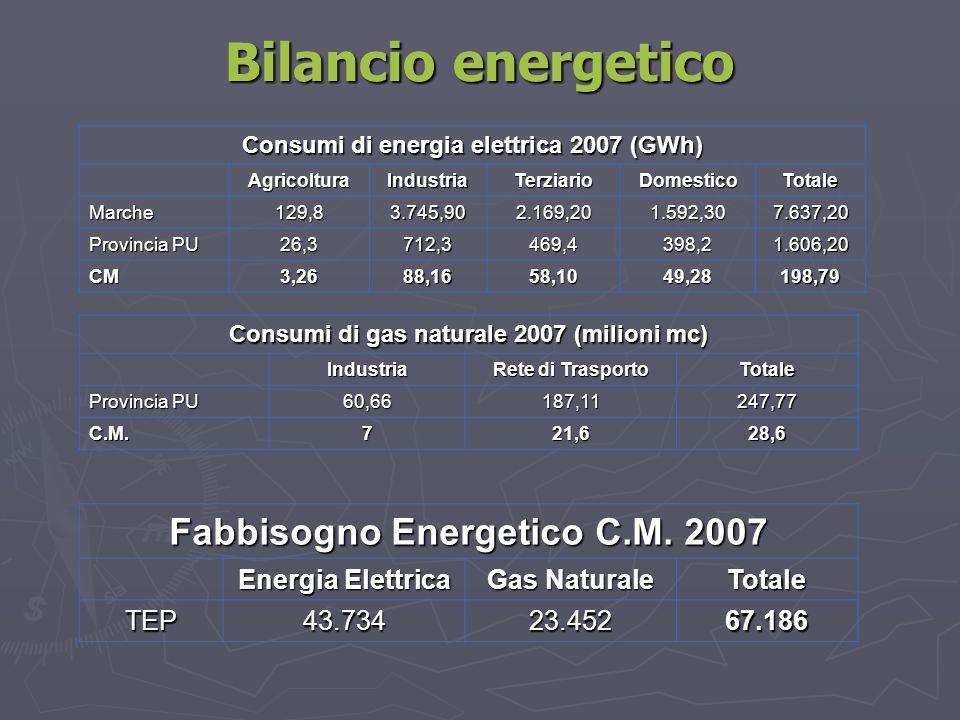 Bilancio energetico Consumi di energia elettrica 2007 (GWh) AgricolturaIndustriaTerziarioDomesticoTotale Marche129,83.745,902.169,201.592,307.637,20 P