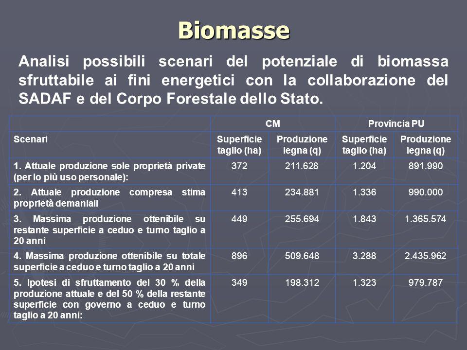Biomasse Analisi possibili scenari del potenziale di biomassa sfruttabile ai fini energetici con la collaborazione del SADAF e del Corpo Forestale del