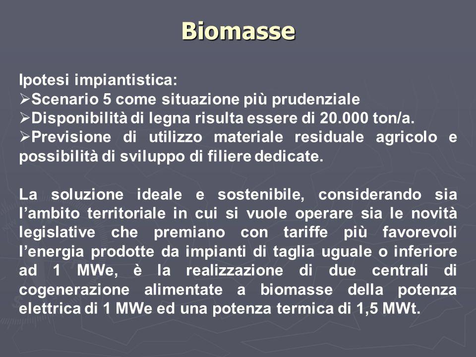 Biomasse Ipotesi impiantistica:  Scenario 5 come situazione più prudenziale  Disponibilità di legna risulta essere di 20.000 ton/a.  Previsione di