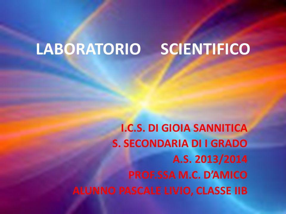 LABORATORIO SCIENTIFICO I.C.S. DI GIOIA SANNITICA S. SECONDARIA DI I GRADO A.S. 2013/2014 PROF.SSA M.C. D'AMICO ALUNNO PASCALE LIVIO, CLASSE IIB