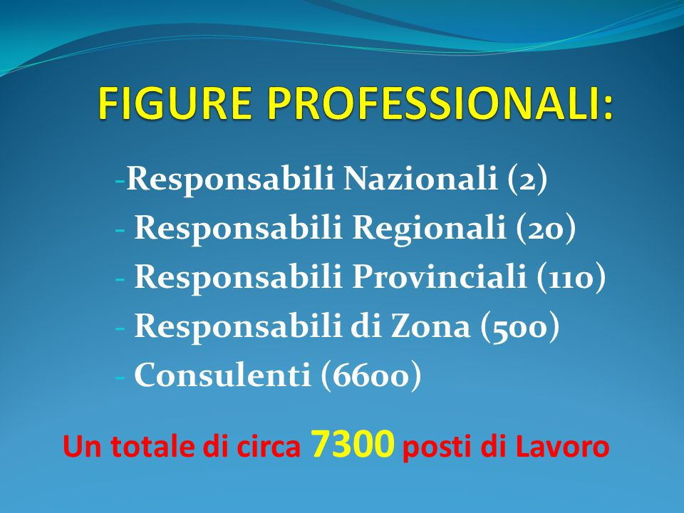 - Responsabili Nazionali (2) - Responsabili Regionali (20) - Responsabili Provinciali (110) - Responsabili di Zona (500) - Consulenti (6600) Un totale di circa 7300 posti di Lavoro