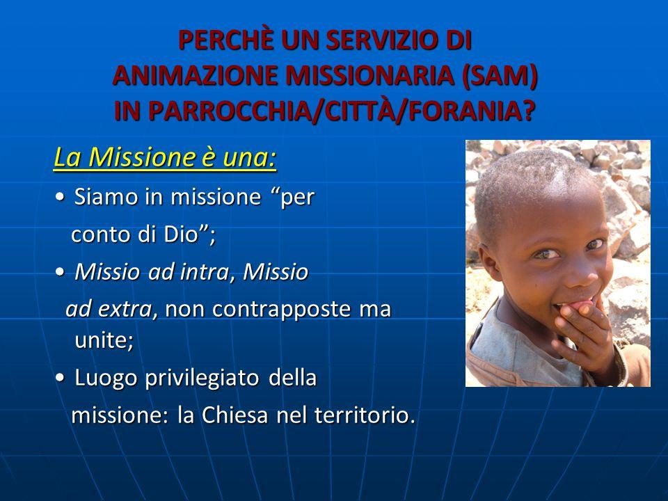 PERCHÈ UN SERVIZIO DI ANIMAZIONE MISSIONARIA (SAM) IN PARROCCHIA/CITTÀ/FORANIA.