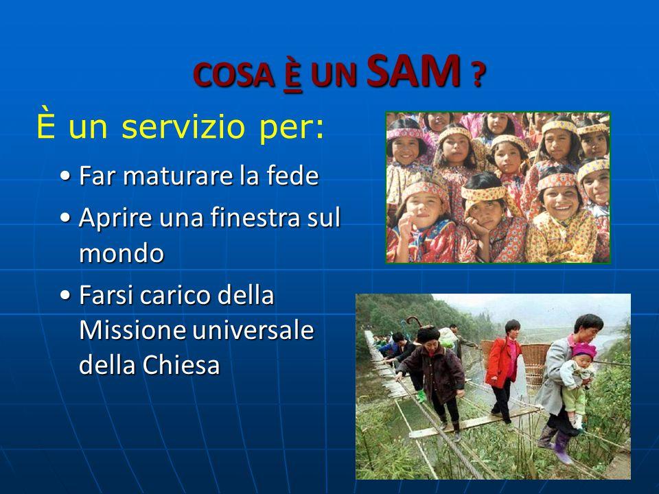 MISSIONE STRAORDINARIA ORGANIZZARE ATTIVITA' MISSIONARIE ORGANIZZARE ATTIVITA' MISSIONARIE - Veglie, mostre, campagne di sensibilizzazione.