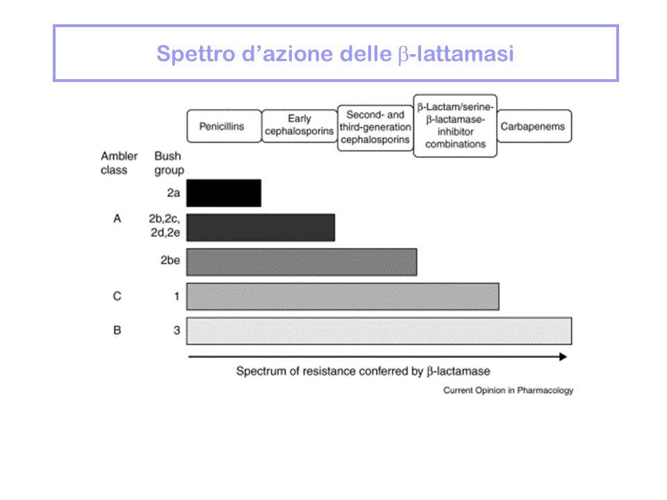 Spettro d'azione delle  -lattamasi