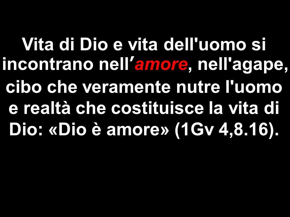 Vita di Dio e vita dell'uomo si incontrano nell'amore, nell'agape, cibo che veramente nutre l'uomo e realtà che costituisce la vita di Dio: «Dio è amo
