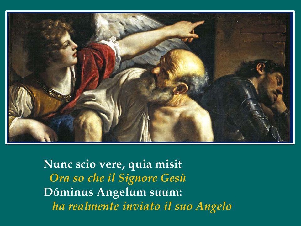 Nunc scio vere, quia misit Ora so che il Signore Gesù Dóminus Angelum suum: ha realmente inviato il suo Angelo