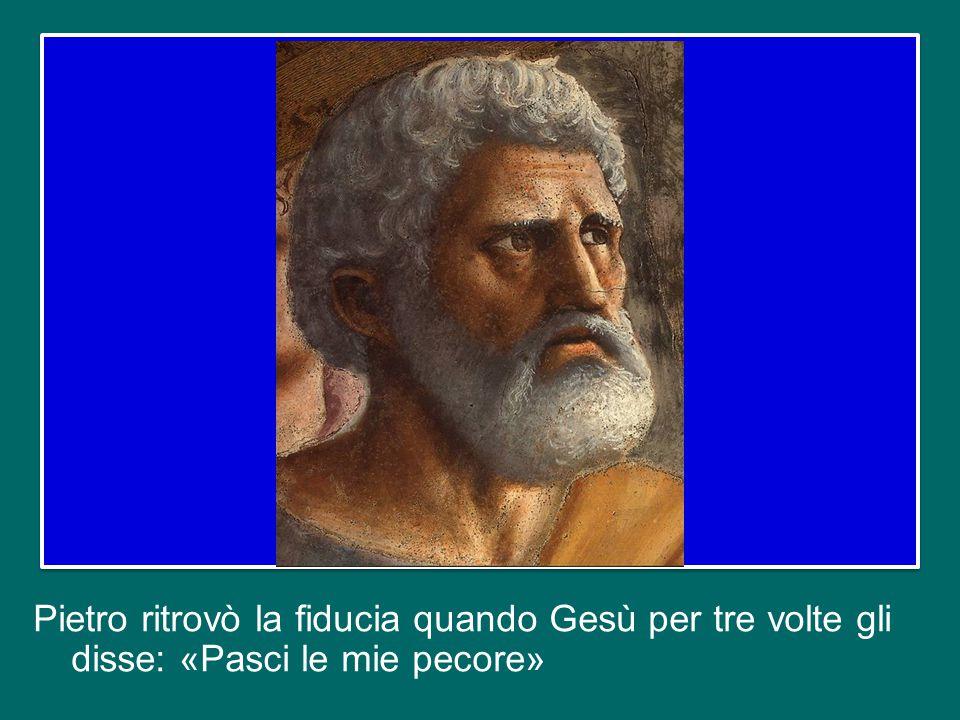 Oggi, il Vescovo di Roma e gli altri Vescovi, specialmente i Metropoliti che hanno ricevuto il Pallio, ci sentiamo interpellati dall'esempio di san Pi
