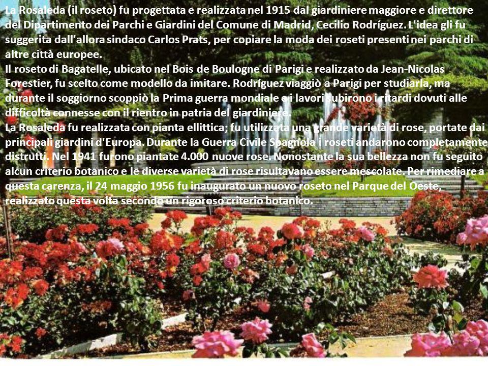 La Rosaleda (il roseto) fu progettata e realizzata nel 1915 dal giardiniere maggiore e direttore del Dipartimento dei Parchi e Giardini del Comune di