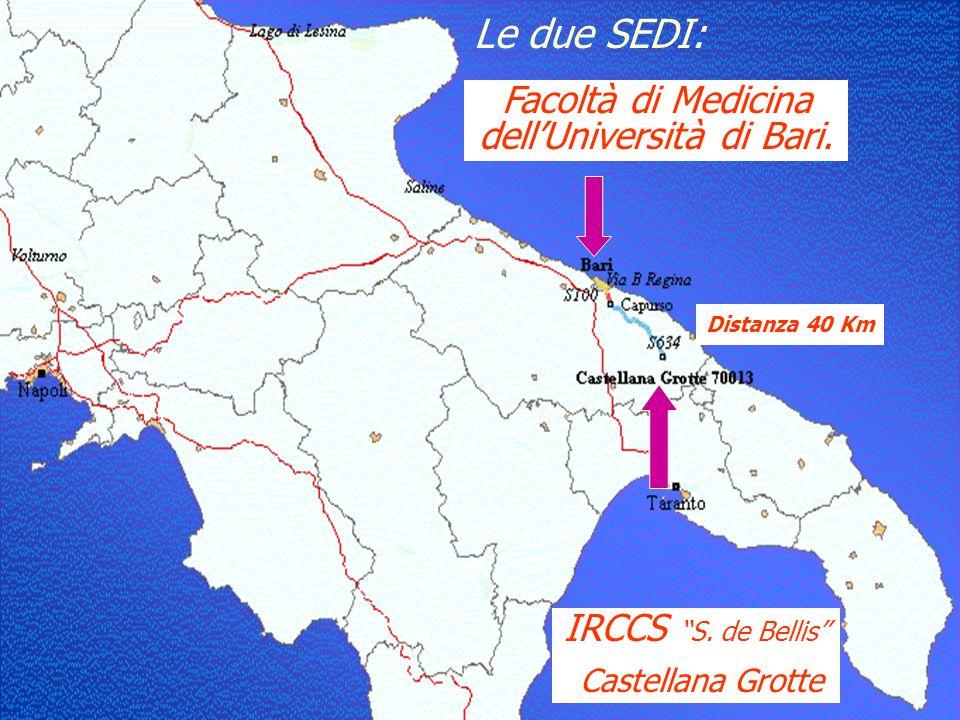 """Obiettivi Sperimentare l'utilizzo della teledidattica per il Corso di Laurea nella professione sanitaria di infermiere tra le sedi IRCCS """"S. de Bellis"""