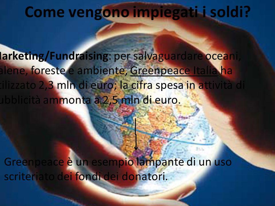Come vengono impiegati i soldi? Marketing/Fundraising: per salvaguardare oceani, balene, foreste e ambiente, Greenpeace Italia ha utilizzato 2,3 mln d