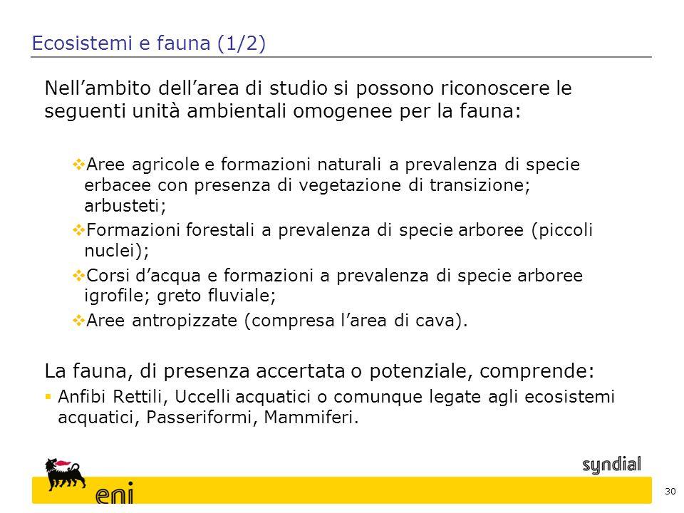 30 Ecosistemi e fauna (1/2) Nell'ambito dell'area di studio si possono riconoscere le seguenti unità ambientali omogenee per la fauna:  Aree agricole