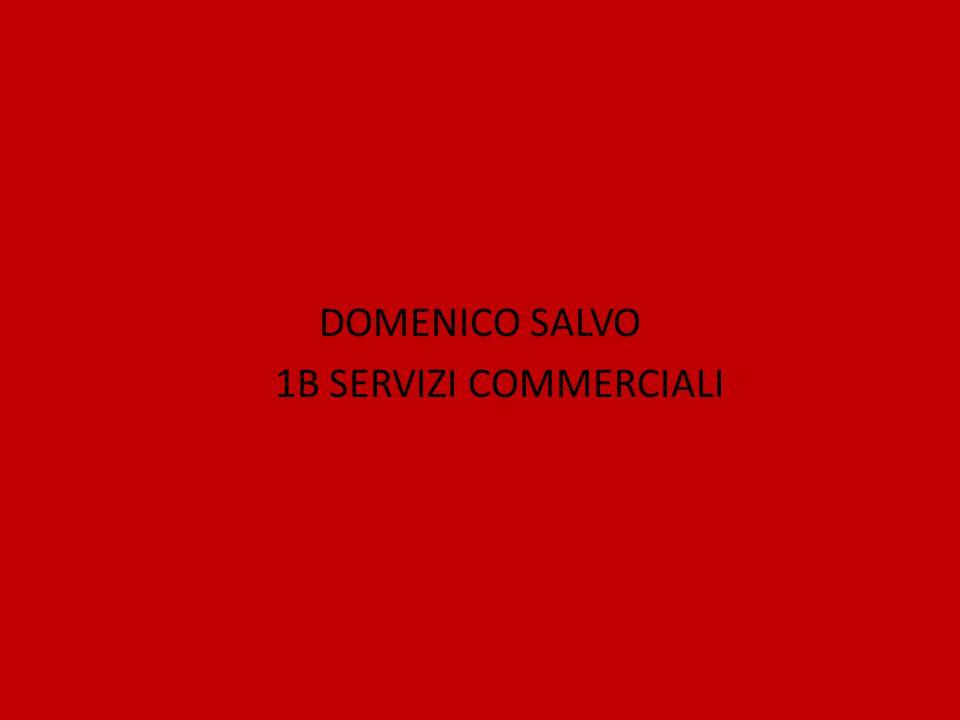 DOMENICO SALVO 1B SERVIZI COMMERCIALI
