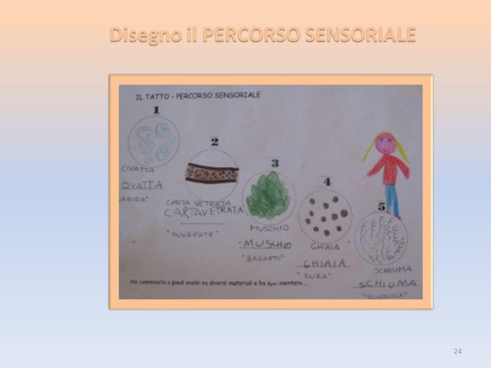 Disegno il PERCORSO SENSORIALE 24