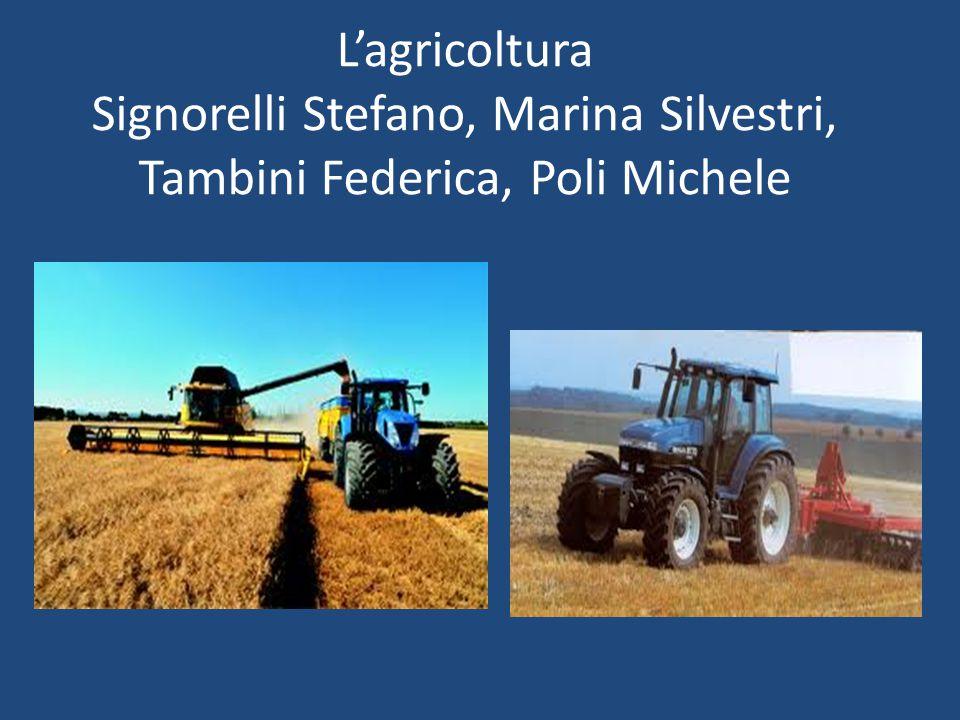 L'agricoltura è stata il settore economico sviluppatosi prima.