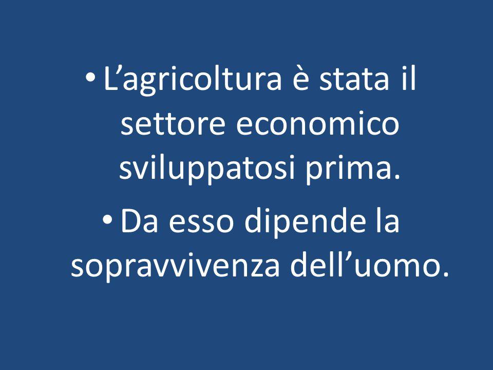 L'agricoltura è stata il settore economico sviluppatosi prima. Da esso dipende la sopravvivenza dell'uomo.