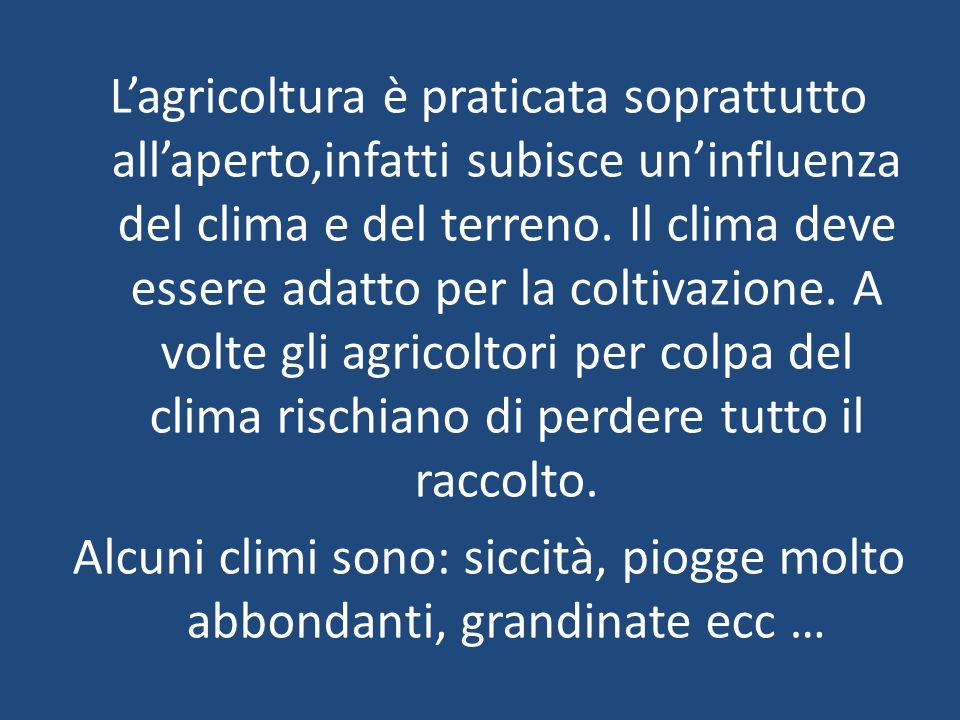 L'agricoltura è praticata soprattutto all'aperto,infatti subisce un'influenza del clima e del terreno. Il clima deve essere adatto per la coltivazione