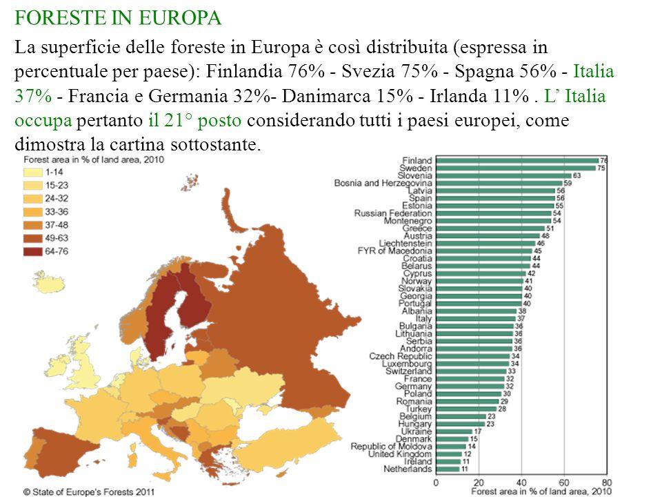 FORESTE IN EUROPA La superficie delle foreste in Europa è così distribuita (espressa in percentuale per paese): Finlandia 76% - Svezia 75% - Spagna 56% - Italia 37% - Francia e Germania 32%- Danimarca 15% - Irlanda 11%.