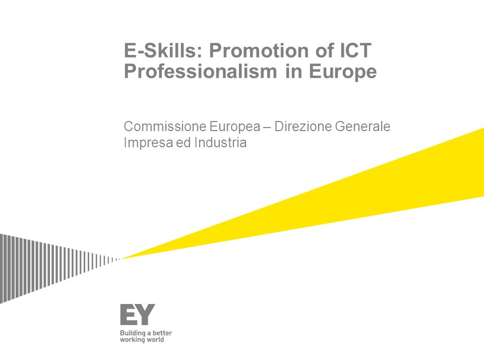 E-Skills: Promotion of ICT Professionalism in Europe Commissione Europea – Direzione Generale Impresa ed Industria