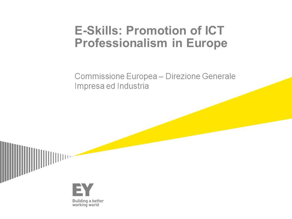 E-Skills: Promotion of ICT Professionalism in Europe Commissione Europea – Direzione Generale Impresa ed Industria