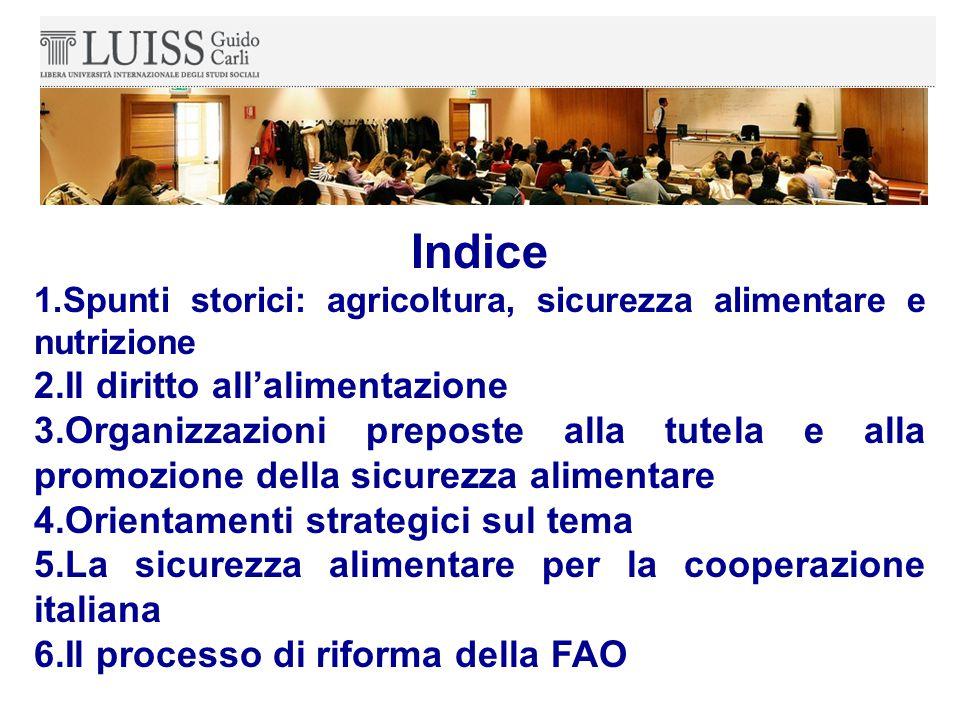 Indice 1.Spunti storici: agricoltura, sicurezza alimentare e nutrizione 2.Il diritto all'alimentazione 3.Organizzazioni preposte alla tutela e alla promozione della sicurezza alimentare 4.Orientamenti strategici sul tema 5.La sicurezza alimentare per la cooperazione italiana 6.Il processo di riforma della FAO