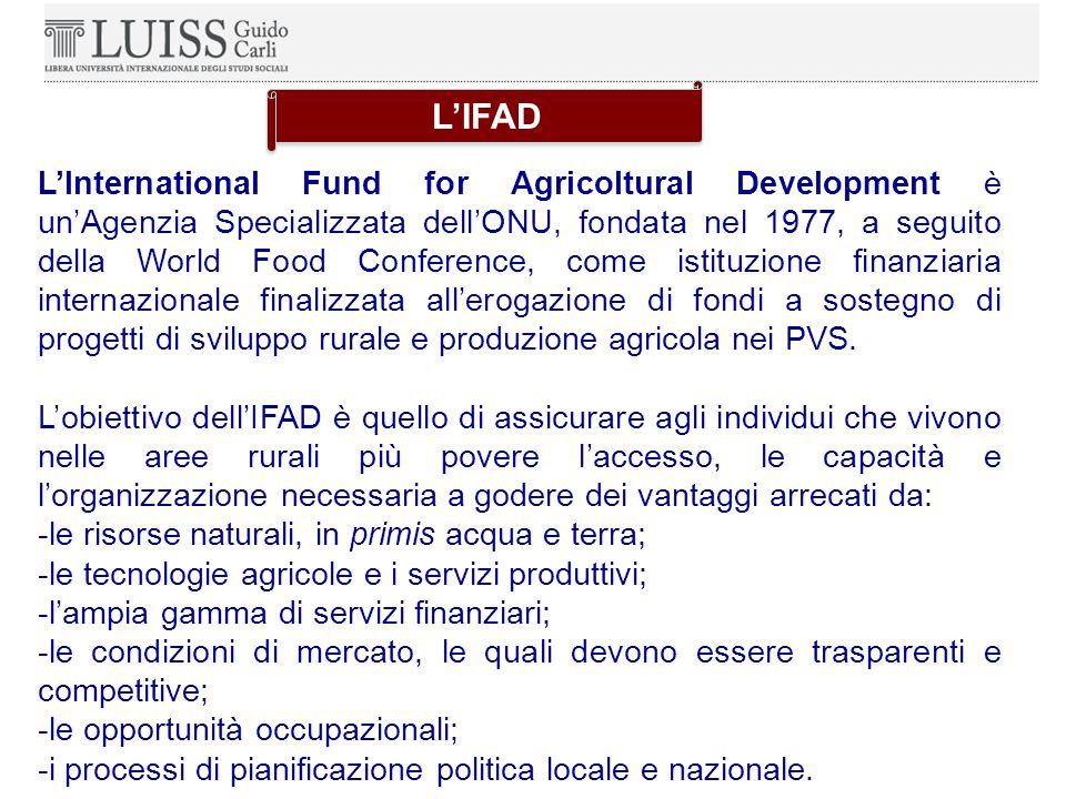 L'International Fund for Agricoltural Development è un'Agenzia Specializzata dell'ONU, fondata nel 1977, a seguito della World Food Conference, come istituzione finanziaria internazionale finalizzata all'erogazione di fondi a sostegno di progetti di sviluppo rurale e produzione agricola nei PVS.