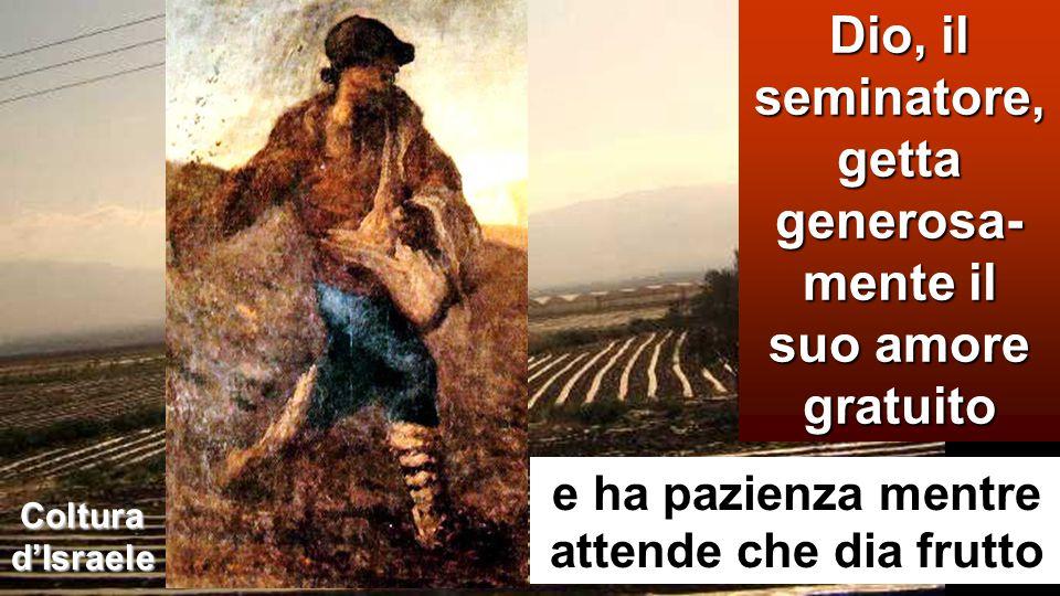 Coltura d'Israele Dio, il seminatore, getta generosa- mente il suo amore gratuito e ha pazienza mentre attende che dia frutto