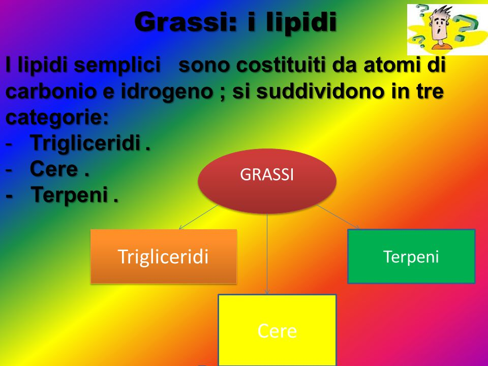Grassi: i lipidi I lipidi semplici sono costituiti da atomi di carbonio e idrogeno ; si suddividono in tre categorie: -Trigliceridi. -Cere. - Terpeni.