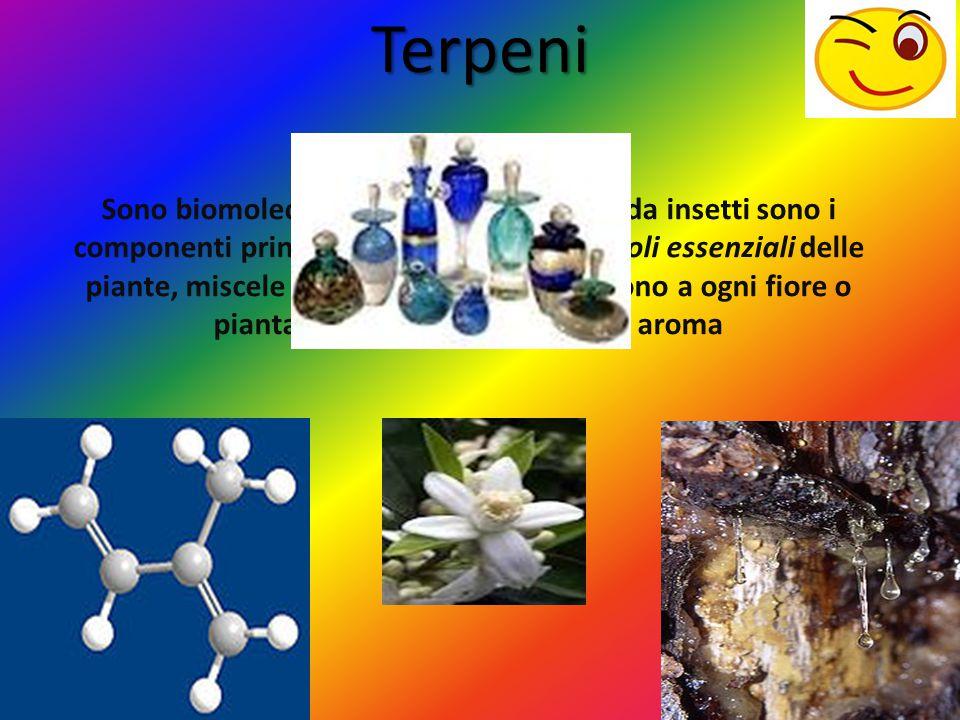 Terpeni Sono biomolecole prodotte da piante e da insetti sono i componenti principali delle resine e degli oli essenziali delle piante, miscele di sos