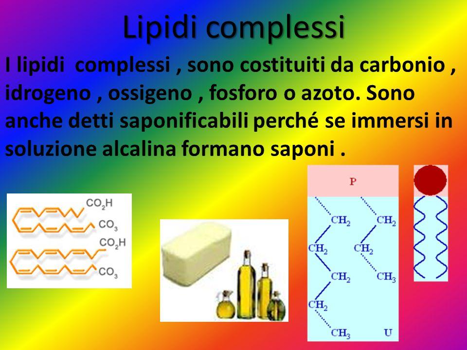 Lipidi complessi I lipidi complessi, sono costituiti da carbonio, idrogeno, ossigeno, fosforo o azoto. Sono anche detti saponificabili perché se immer