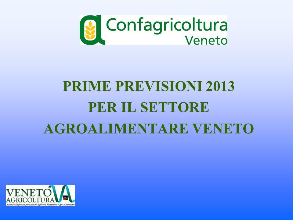 PRIME PREVISIONI 2013 PER IL SETTORE AGROALIMENTARE VENETO