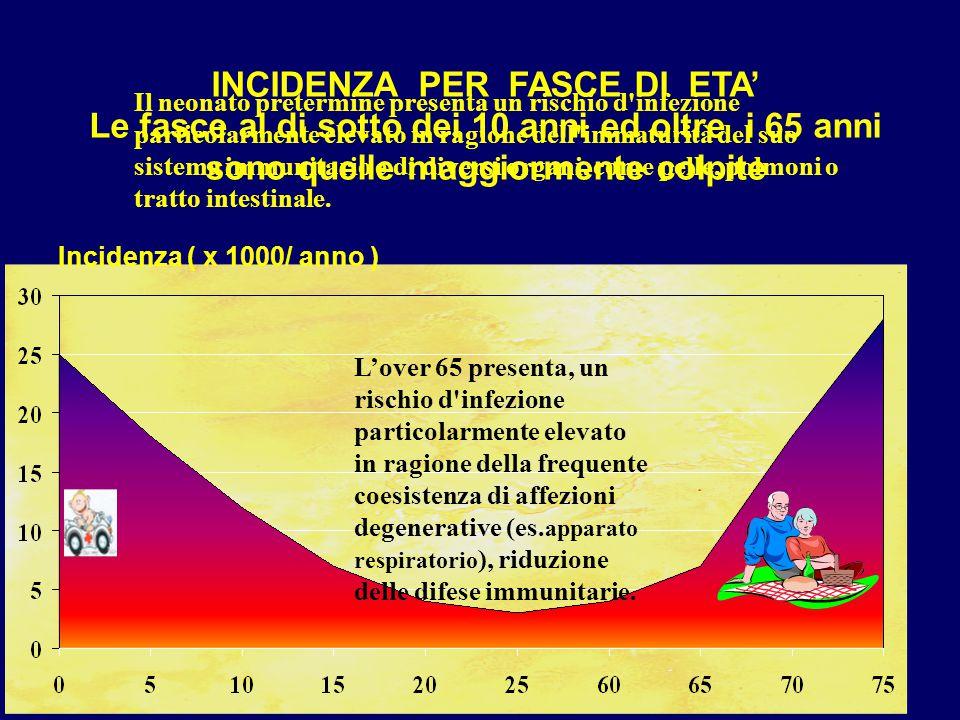 INCIDENZA PER FASCE DI ETA' Le fasce al di sotto dei 10 anni ed oltre i 65 anni sono quelle maggiormente colpite Incidenza ( x 1000/ anno ) Il neonato