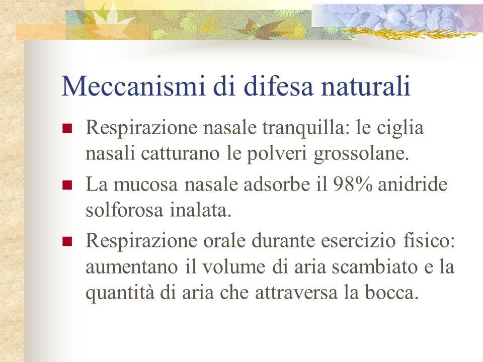 Meccanismi di difesa naturali Respirazione nasale tranquilla: le ciglia nasali catturano le polveri grossolane. La mucosa nasale adsorbe il 98% anidri