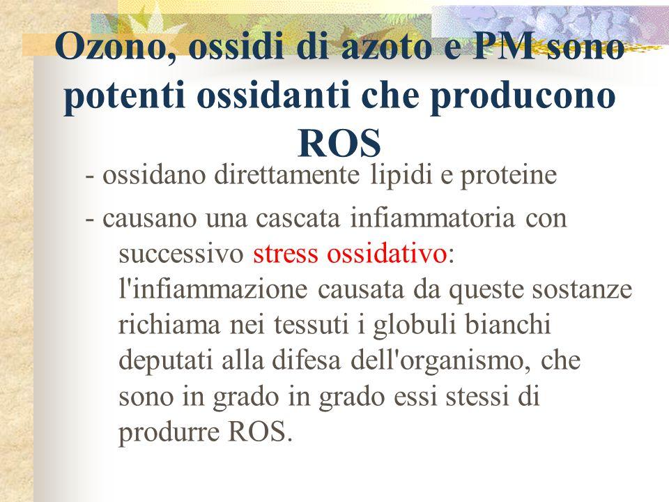 - ossidano direttamente lipidi e proteine - causano una cascata infiammatoria con successivo stress ossidativo: l'infiammazione causata da queste sost