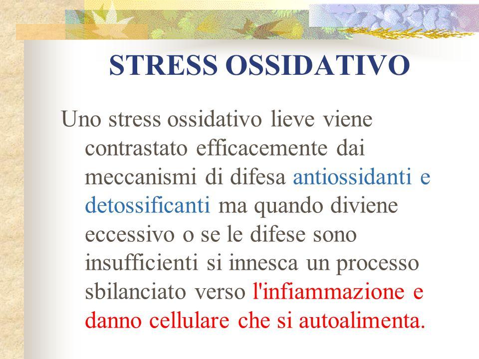 STRESS OSSIDATIVO Uno stress ossidativo lieve viene contrastato efficacemente dai meccanismi di difesa antiossidanti e detossificanti ma quando divien