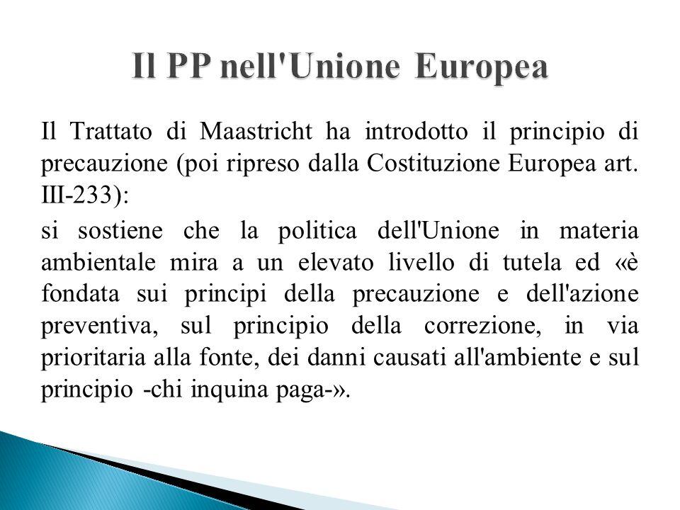 Il Trattato di Maastricht ha introdotto il principio di precauzione (poi ripreso dalla Costituzione Europea art. III-233): si sostiene che la politica