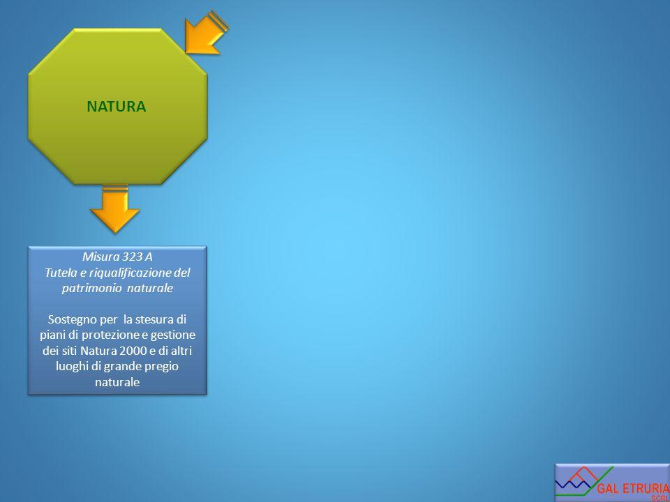NATURA Misura 323 A Tutela e riqualificazione del patrimonio naturale Sostegno per la stesura di piani di protezione e gestione dei siti Natura 2000 e