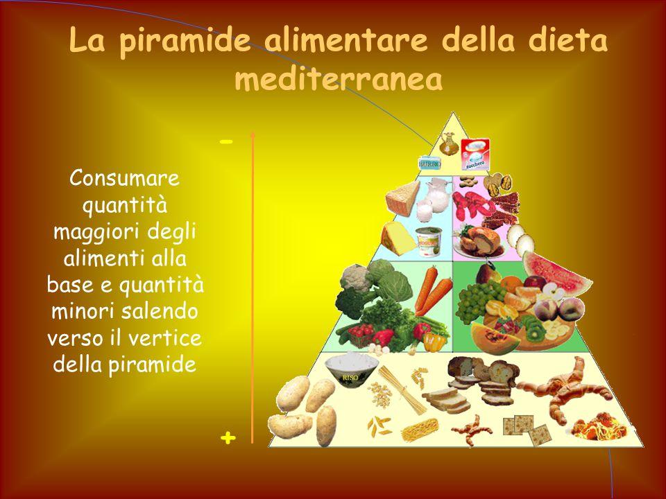 La piramide alimentare della dieta mediterranea Consumare quantità maggiori degli alimenti alla base e quantità minori salendo verso il vertice della