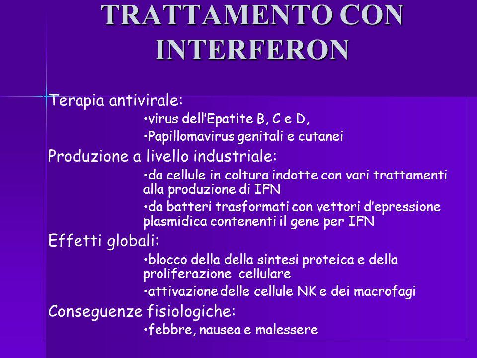 TRATTAMENTO CON INTERFERON Terapia antivirale: virus dell'Epatite B, C e D, Papillomavirus genitali e cutanei Produzione a livello industriale: da cel