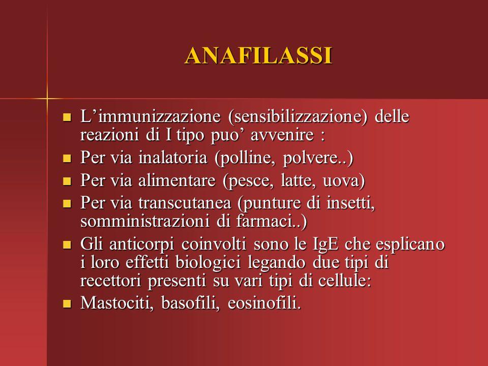 ANAFILASSI L'immunizzazione (sensibilizzazione) delle reazioni di I tipo puo' avvenire : L'immunizzazione (sensibilizzazione) delle reazioni di I tipo