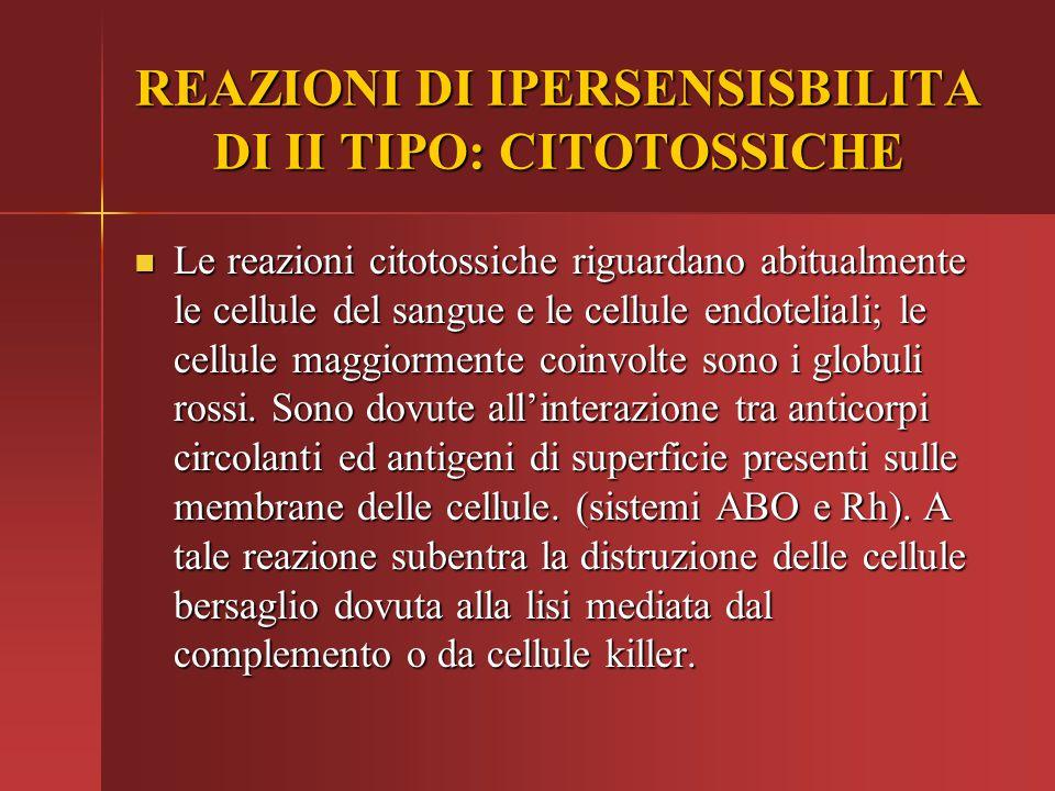 REAZIONI DI IPERSENSISBILITA DI II TIPO: CITOTOSSICHE Le reazioni citotossiche riguardano abitualmente le cellule del sangue e le cellule endoteliali;