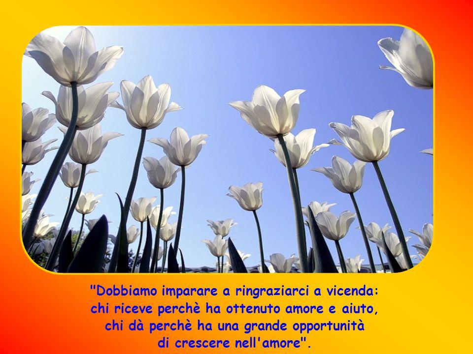 Il 22 Ottobre 2010 si è aperta la causa di Beatificazione Pensieri scritti dal Card.
